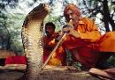 Secret Lives of Snake Charmers